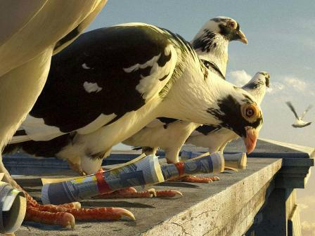 Eleições em Cuba 2017 uso do pombo correio