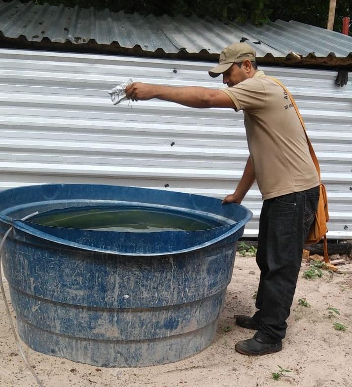 Agentes de endemias intensificam ações para combater o mosquito Aedes aegypti em Pau D'arco do Piauí