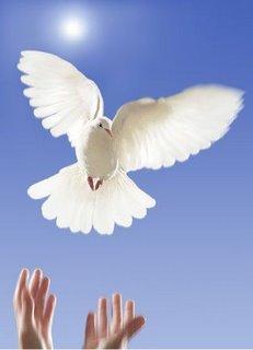 Senhor Jesus! Dai-nos a Paz! Nossa Senhora Santa'Anna! Mãe de Maria a Virgem Santíssima! Tende Piedade dos Justos de Coração.