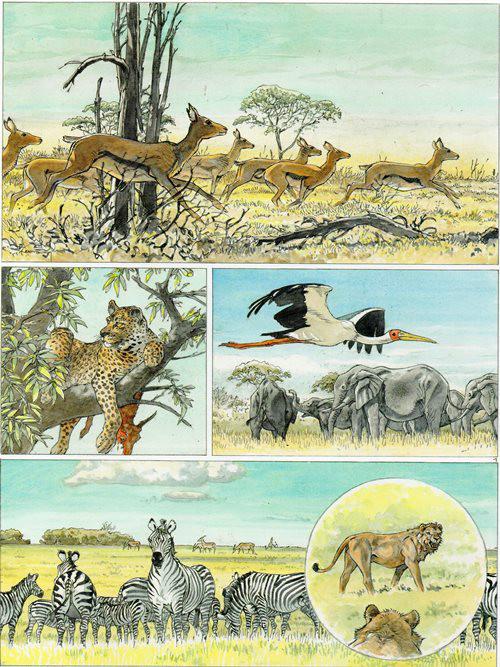 Prancha de: AFRIKA - 1 . AFRIKA