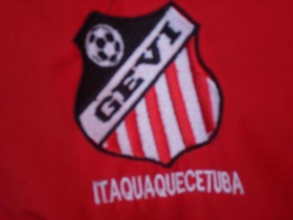 Resultado de imagem para historia grêmio esportivo veteranos de itaquaquecetuba