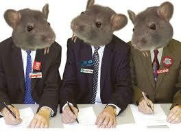 Procuram-se políticos que não sejam ratos das Verbas Públicas