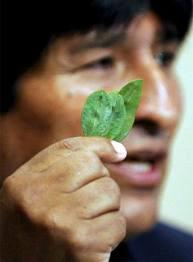Evo Morales - O cocalero
