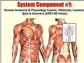 Human Anatomy & Physiology Study Course , curso sobre anatomia humana