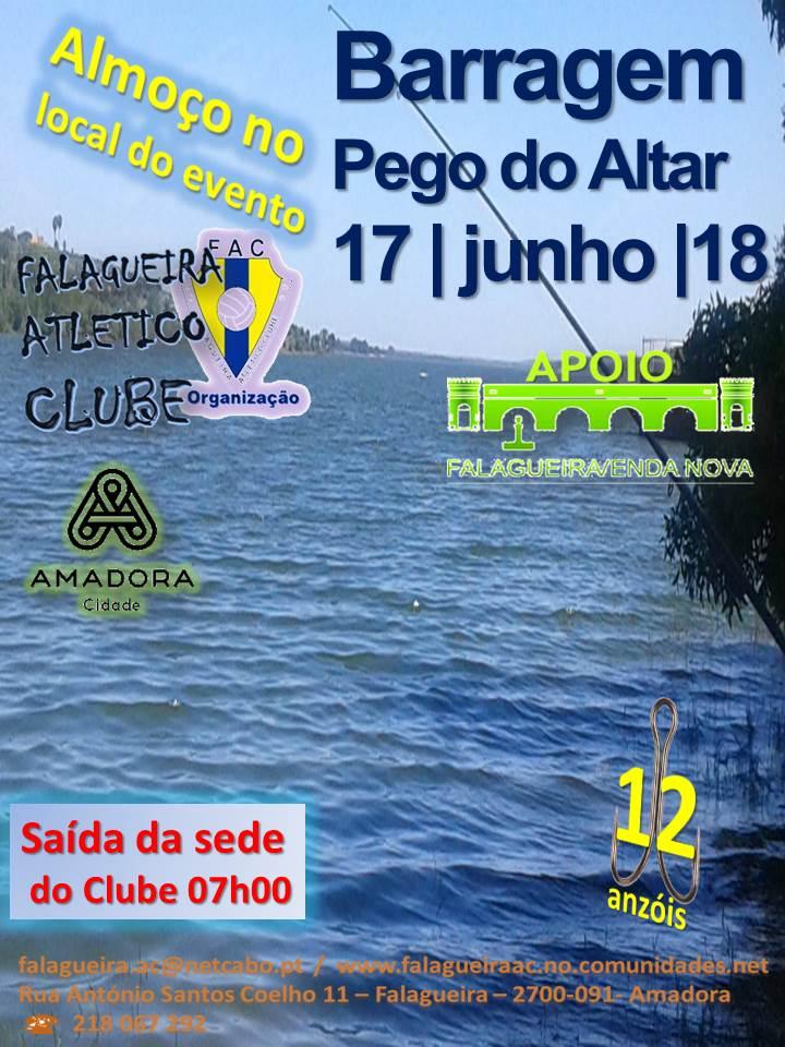 falagueira A C 2018