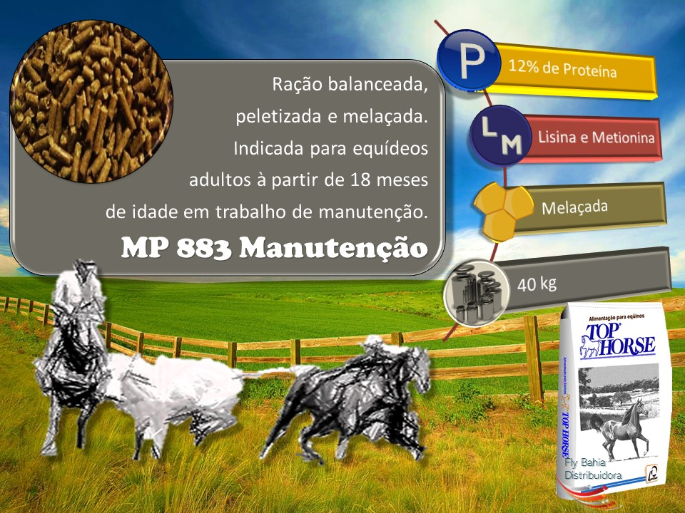 MP 883