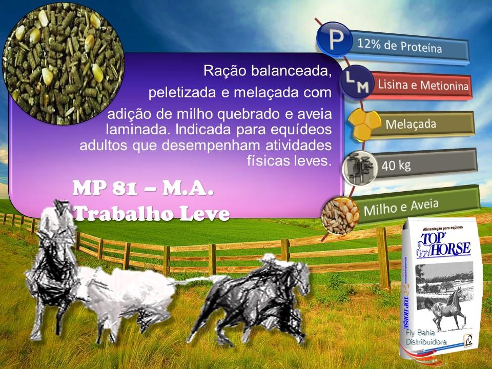 MP 81 M.A.