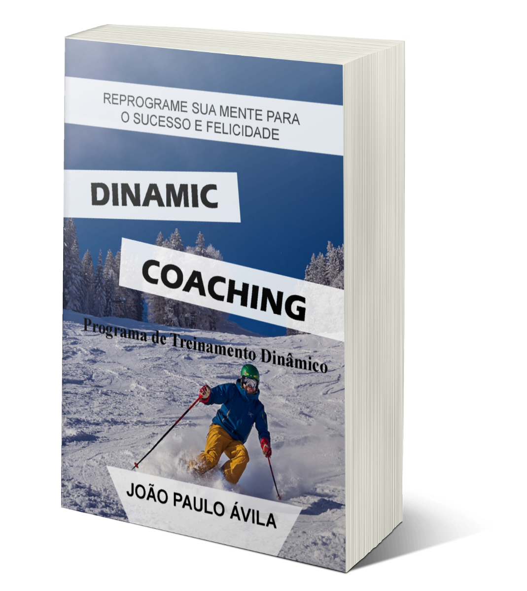 Curso Dinamic Coaching