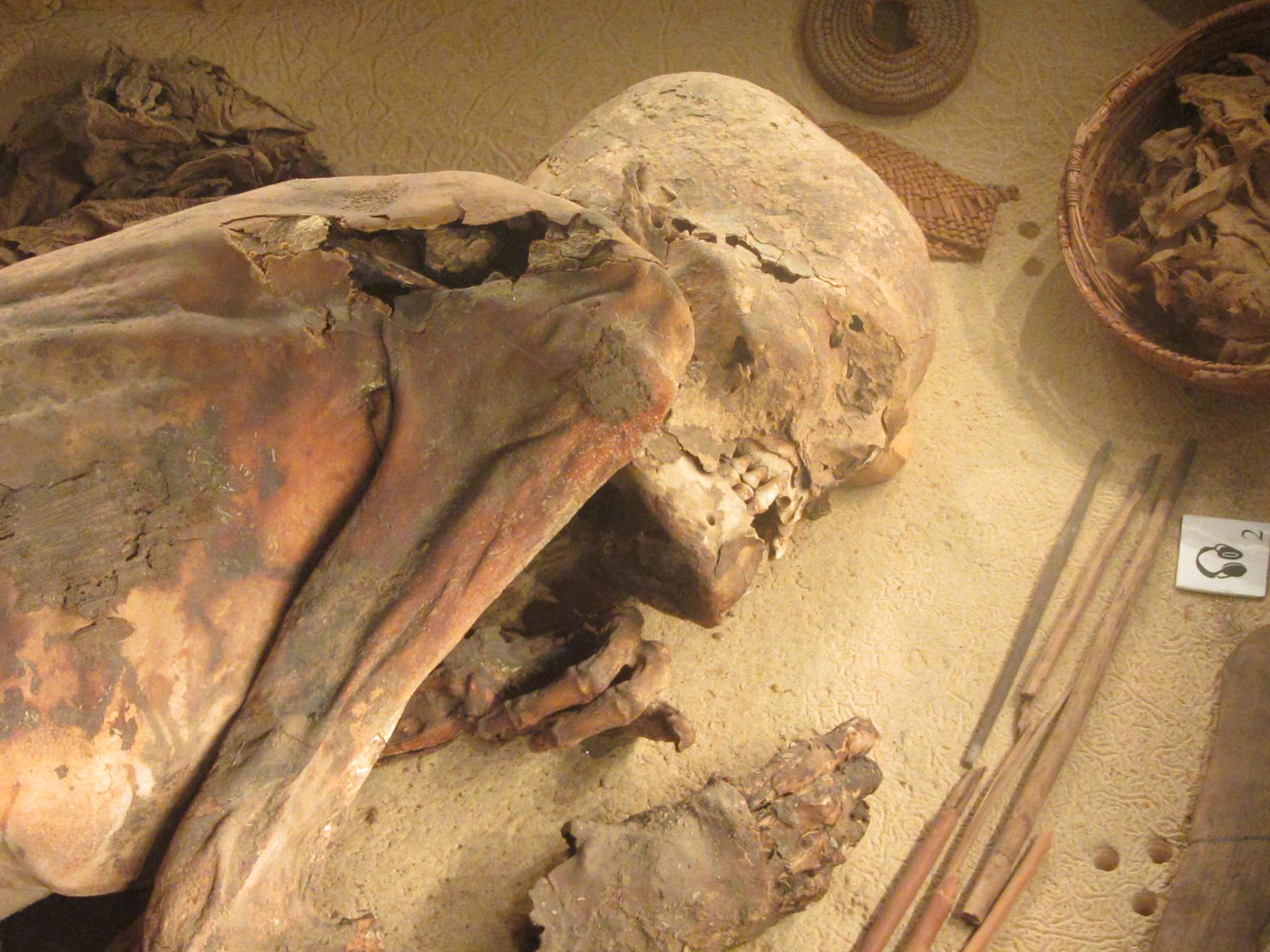 Cadáver, descoberto, inacreditável