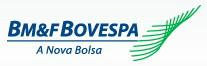 Consulta no site da Bovespa