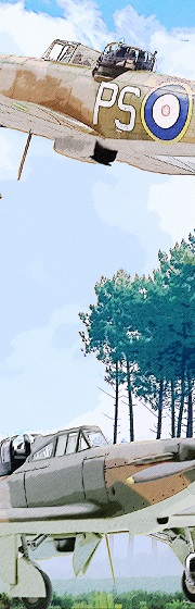 MMK_Vertical_Banner_75