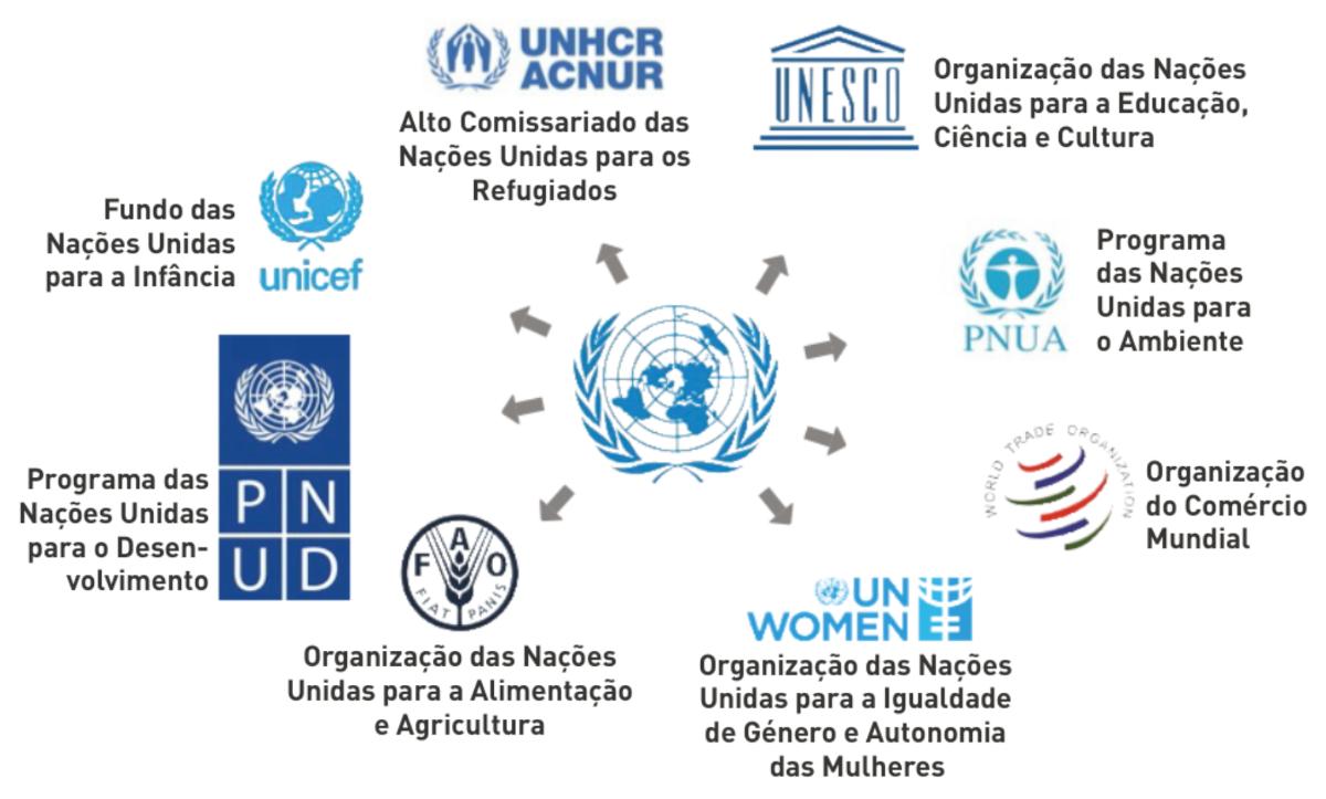 Alguns dos organismos das Nações Unidas.