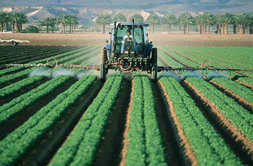 Colocação de pesticidas.