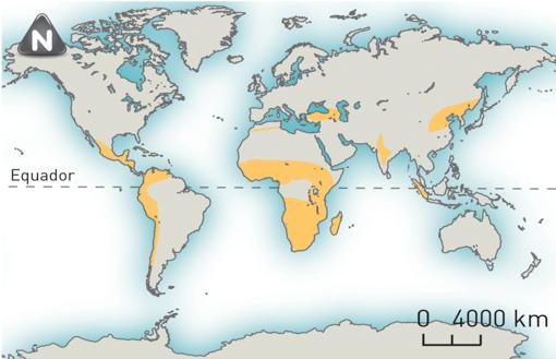 Principais áreas do mundo onde se pratica a agricultura de sequeiro.