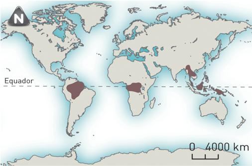 Principais áreas do mundo onde se pratica a agricultura itinerante.