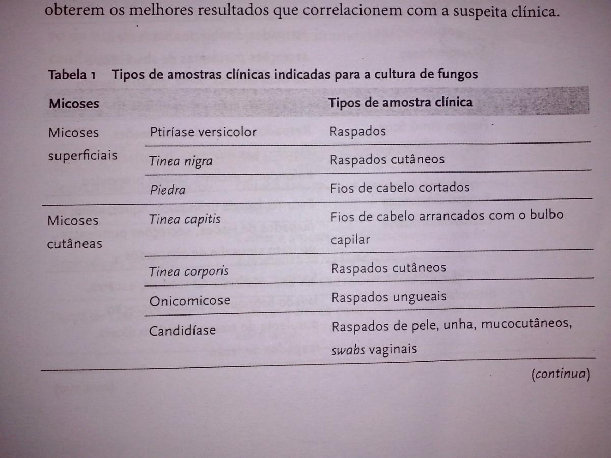 Tabela 1 fungo