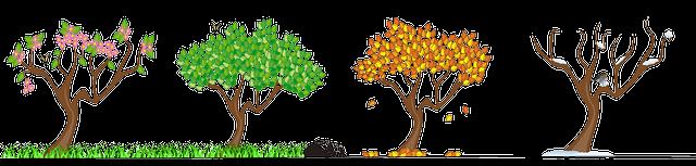 A importância da recuperação de áreas degradas para o meio ambiente