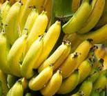 Benefícios da Banana id