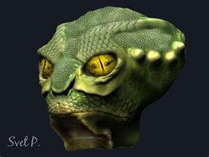 reptil_2.jpg