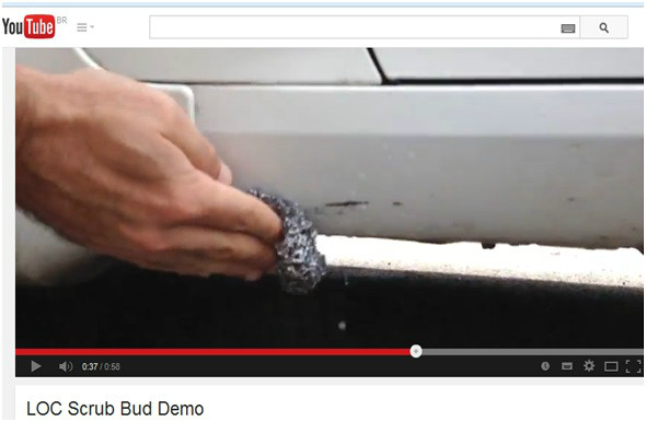 Scrub Buds