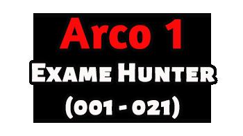 Arco 1 - Exame Hunter