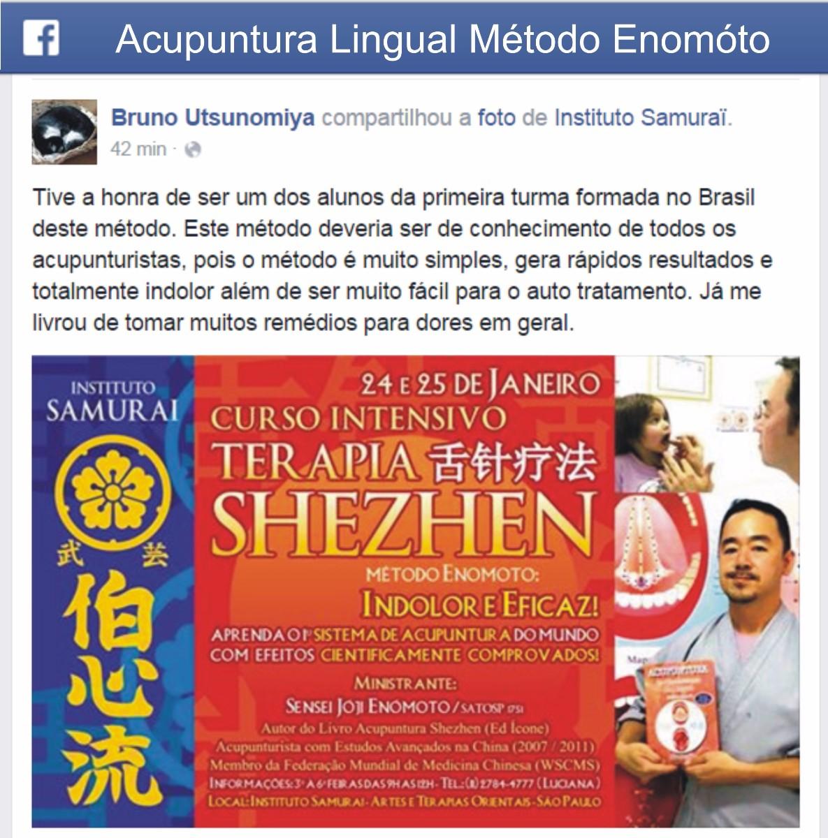 acupuntura lingual enomoto shezhen