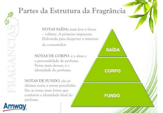 estrutura fragrância