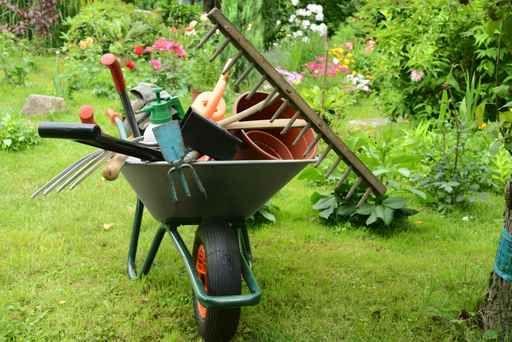 Manutenção de jardins Campinas-Limpeza de terrenos