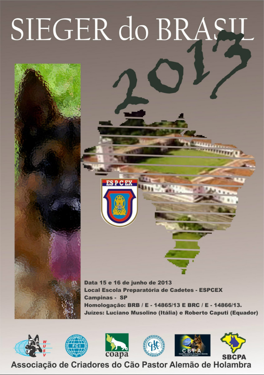 Sieger Brasil 2013