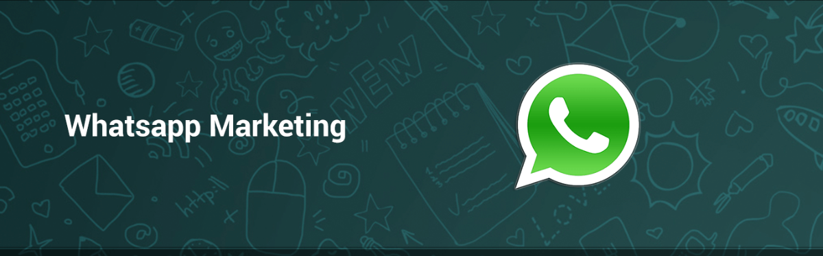 agencia power whatsapp marketing