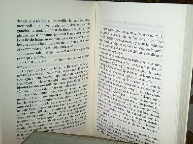 Chez zappandoo.comunidades.net, Le Crabaudeur, un roman avec un récit originale.