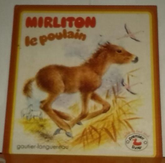Chez zappandoo, l' histoire de Mirliton le poulain