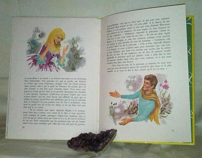 La Belle au Bois Dormant. Un conte intemporel pour enfants, en vente online sur zappandoo.comunidades.net